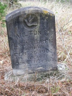 Milton George Leinweber