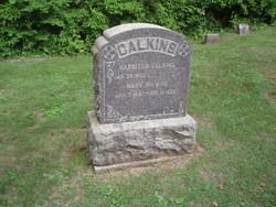 Mary <i>Hawver</i> Calkins