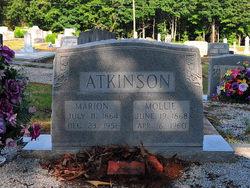 Jeptha Marion Atkinson
