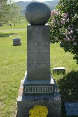 Hannah Matilda <i>Cheney</i> Anderson