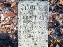 William S Hodges