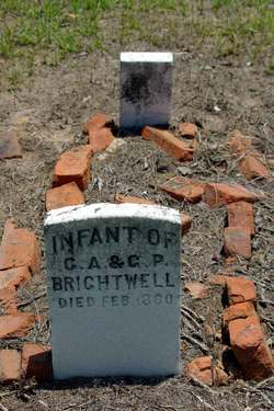 Infant Brightwell