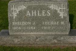 Sheldon J. Ahles