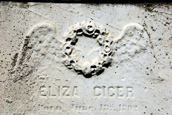 Eliza Cicer