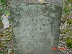 Lafayette Walton
