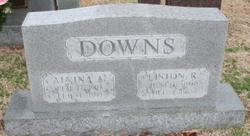 Alvina A Downs