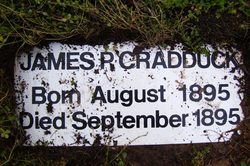 James P. Cradduck