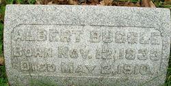Albert Buggle