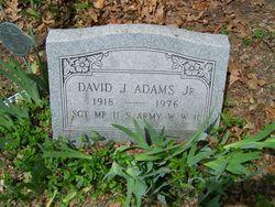 David J Adams, Jr