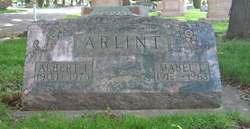 Albert Ivan Arlint