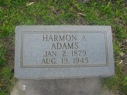 Harmon A Adams