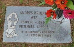 Andres Briones-Martinez