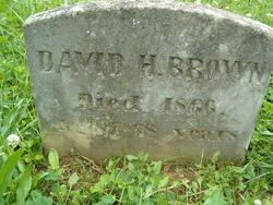 David H Brown