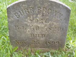 Burr Brown