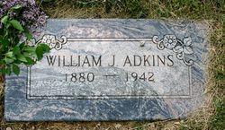William Johnson Adkins