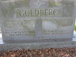Anna Goldberg