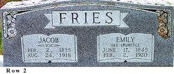 Johann Jacob Jacob Fries