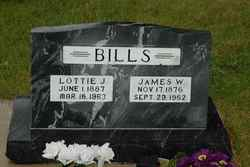 James Winston Bills