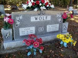 Deward Everett Wolf