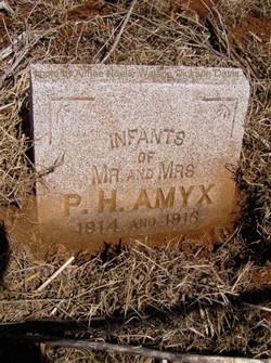 Infant Amyx