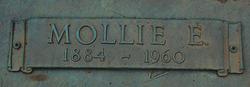 Mary Mollie <i>Elliott</i> Blevins