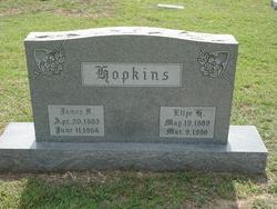 James Franklin Hopkins