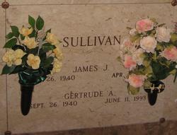 James J Sullivan