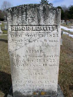 Simon Leavitt