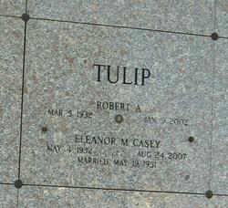 Robert A Tulip
