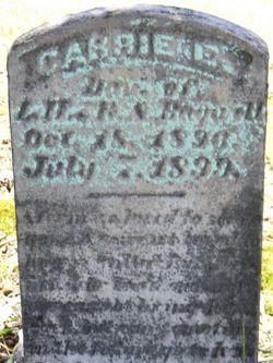 Carrie Bagwell