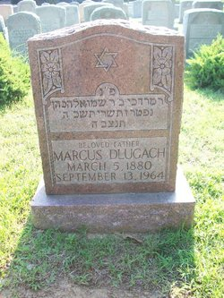 Marcus Dlugach
