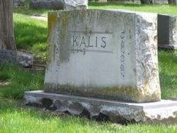 Sarah Jane <i>Myerson</i> Kalis