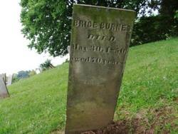 Brice Burns
