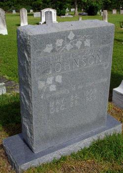 Tina Ellen <i>Barngrover</i> Johnson