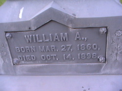 William A Bee