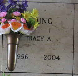 Tracy A Young