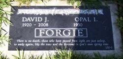 Opal I Forgie