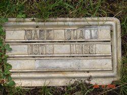 Gabe Clark