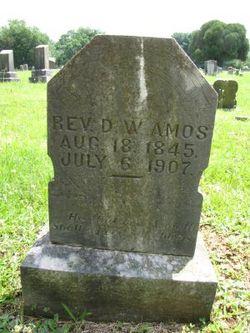 Rev David William Amos