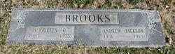 Andrew Jackson Brooks
