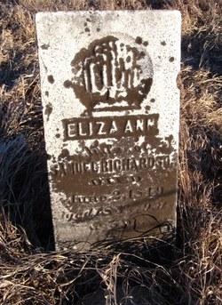 Eliza Ann <i>Peck</i> Richardson