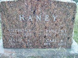 Carl A Haney