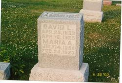 David Leroy Ammons