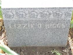Elizabeth Olivia Lizzie <i>Hunter</i> Biggs