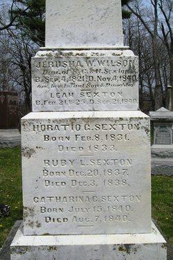 Catharina C Sexton