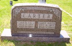 Carrie Lee <i>Jeffus</i> Carter