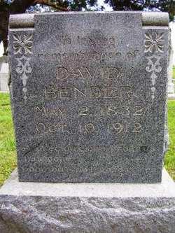 David B Bender
