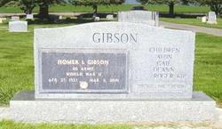 Homer Lowe Gibson