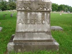 Andrew C Anderson
