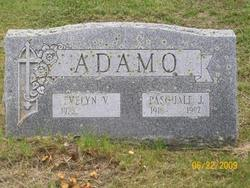 Evelyn Viola <i>Perkins</i> Adamo